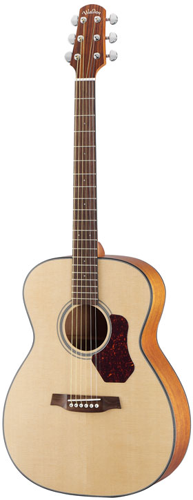 Walden Guitar Electric Co550 Madison